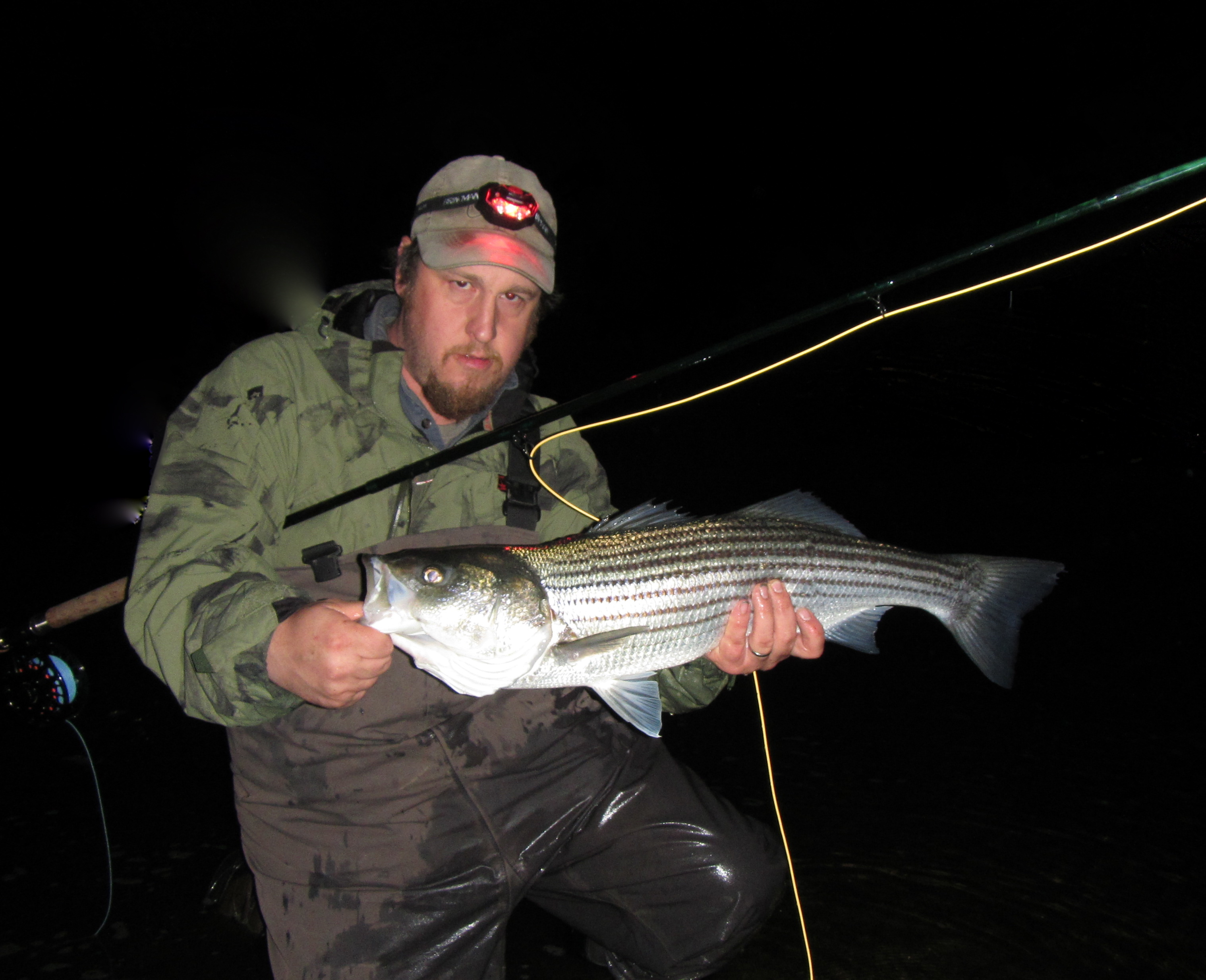 Striper currentseams for Farmington river fishing report