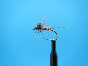 March Brown Wingless