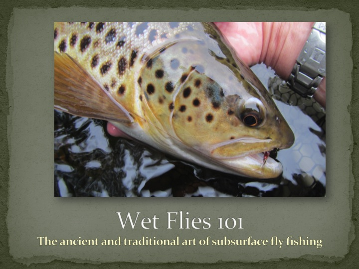 Wet Flies 101