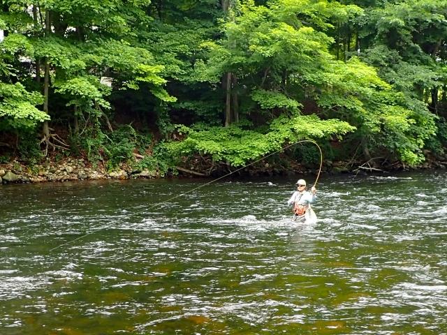 WF101 Fish On