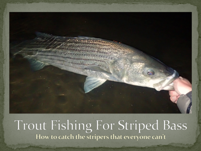 TroutFishingStripers